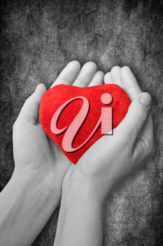 Royalty Free Photo of a Person Holding a Heart