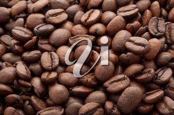 Close-up of brown coffee beans, background texture