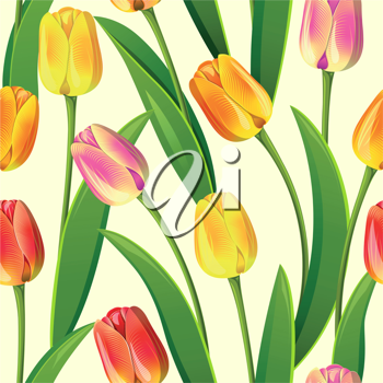 Royalty Free Clipart Image of a Tulip Background